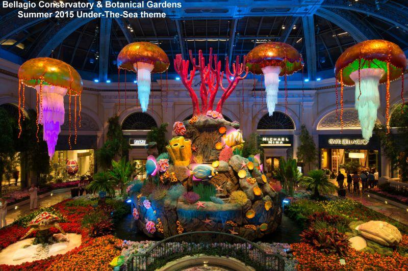 Brett 39 S Vegas View 7 12 15 Speedvegas In The Works For 2016