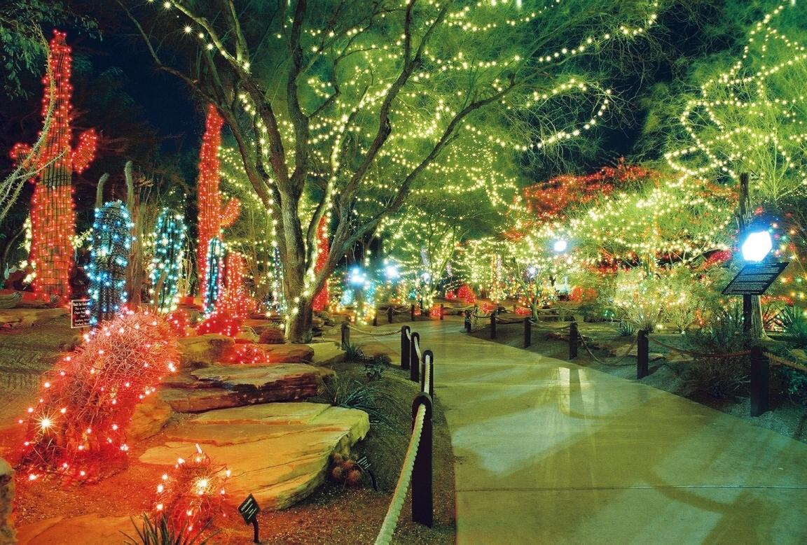 Christmas Lights In Savannah Ga