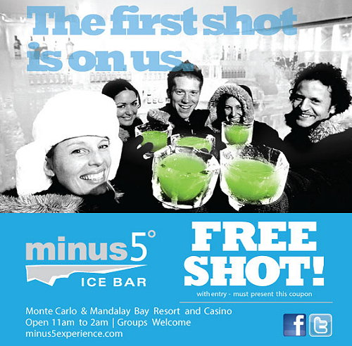 Minus 5 Ice Bar Las Vegas